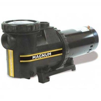 JACUZZIE-MAGNUM-1-HP--INGROUND-PUMP